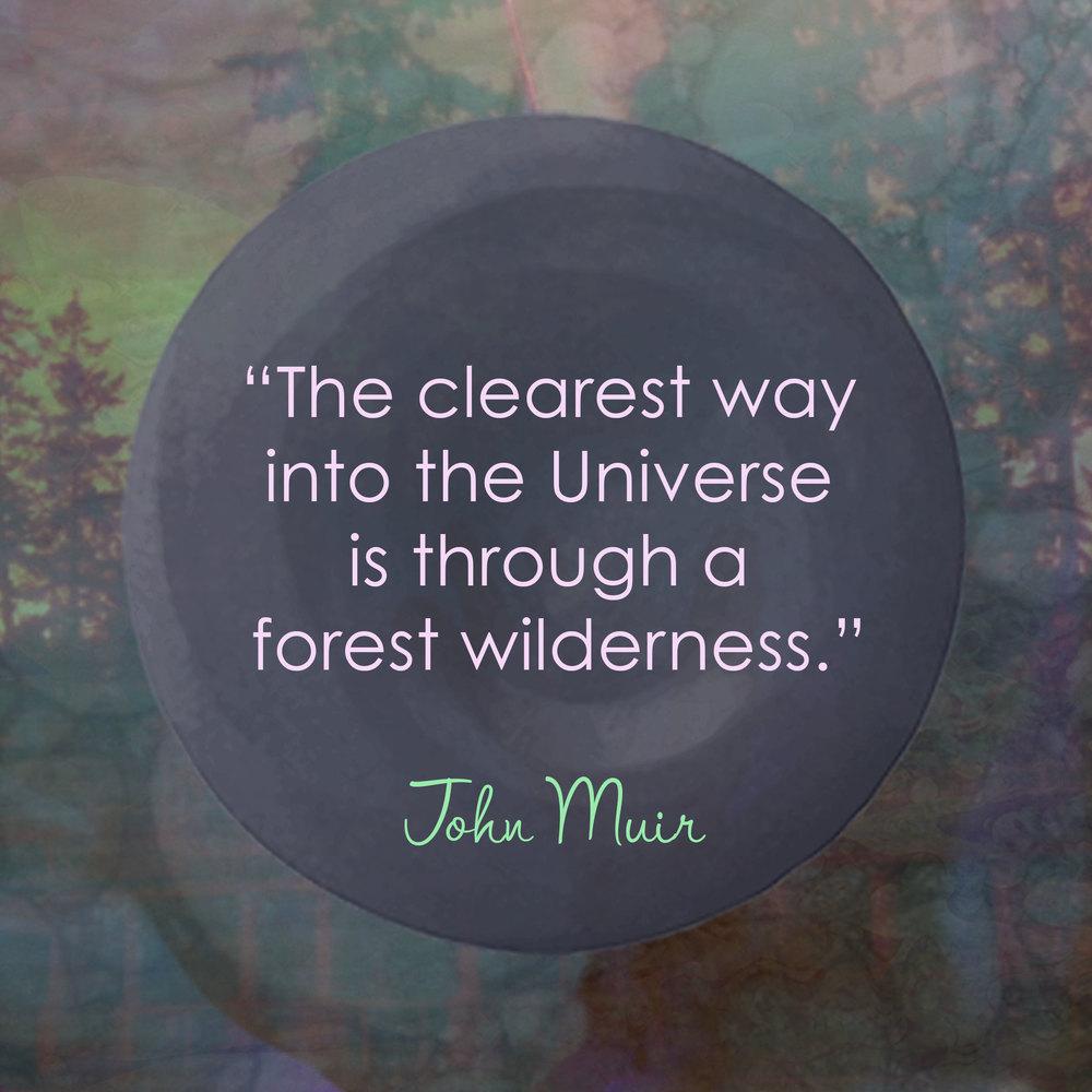 Devine Color Wisdom - John Muir