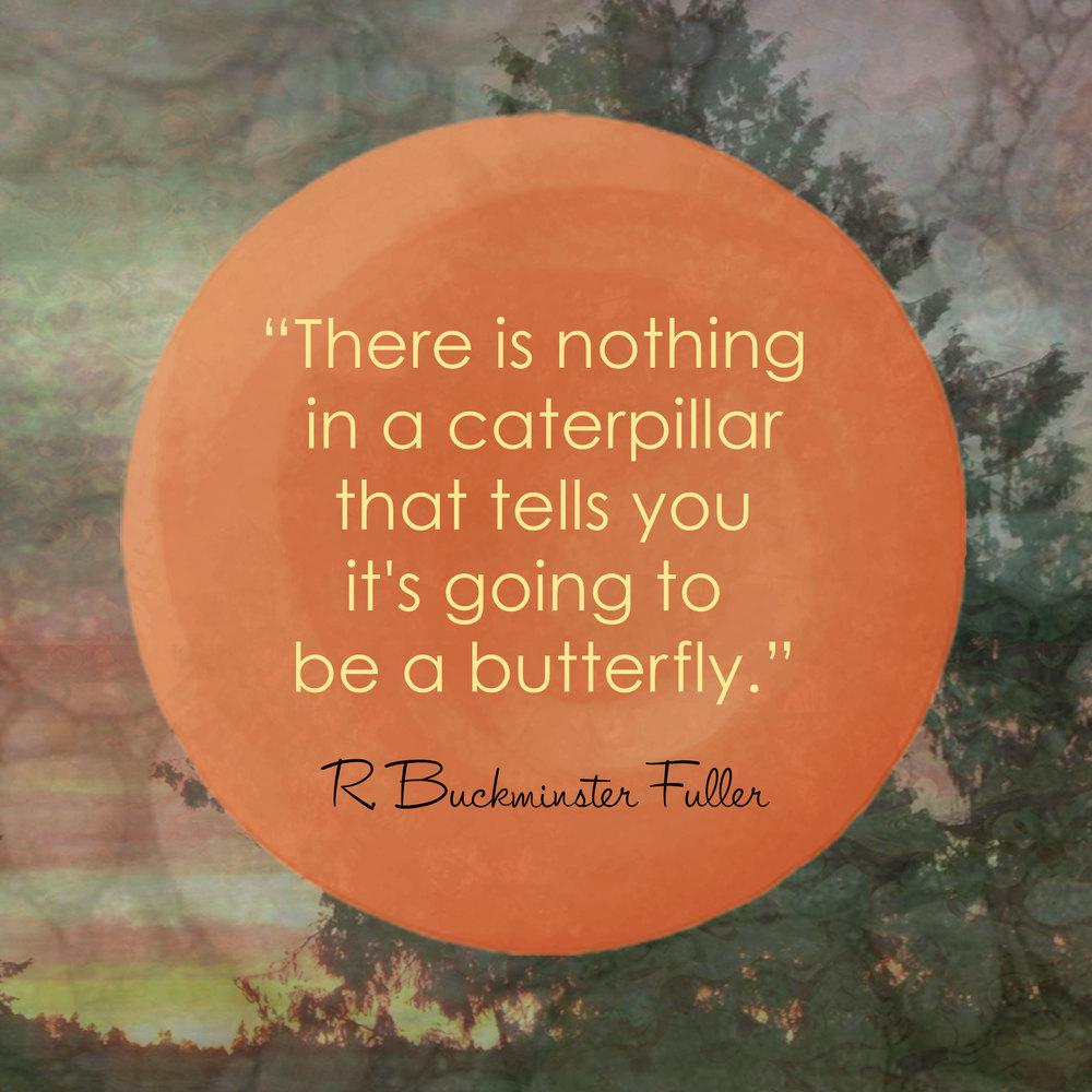 Devine Color Wisdom - Buckminster Fuller