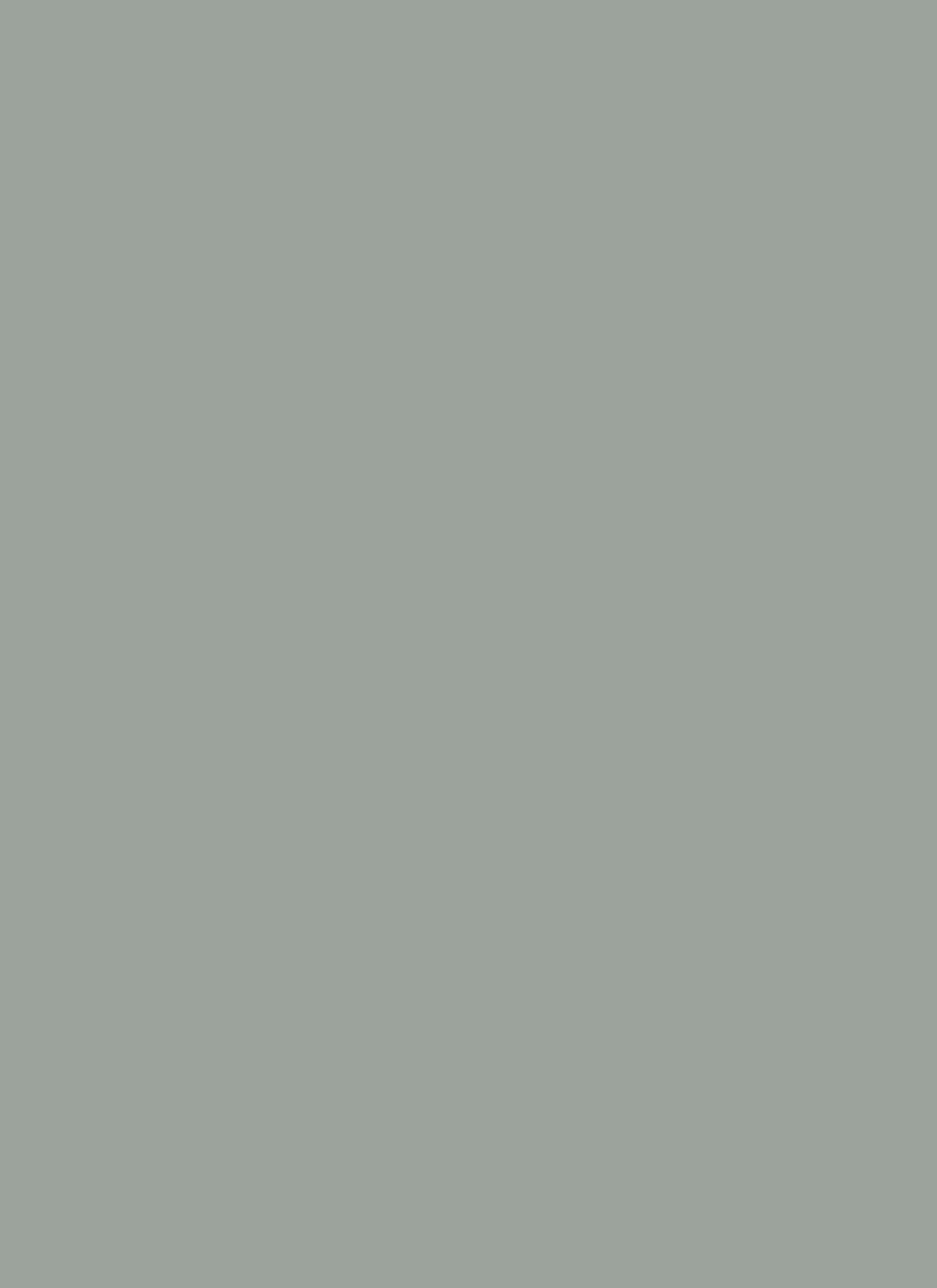 almond paint colorDevine Almond  Devine Color Home