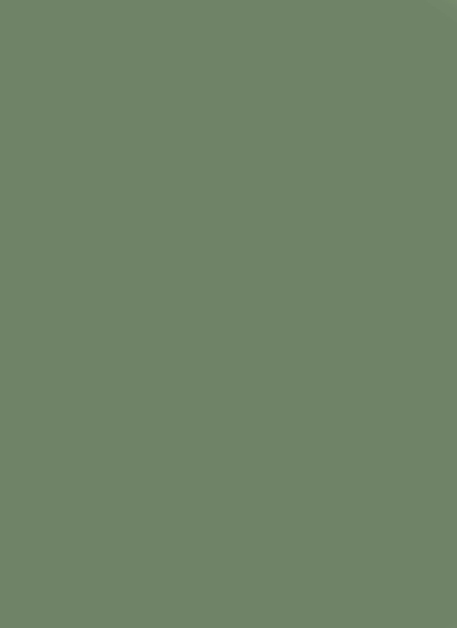 Devine Fir Deluxe Swatch 8-by-11