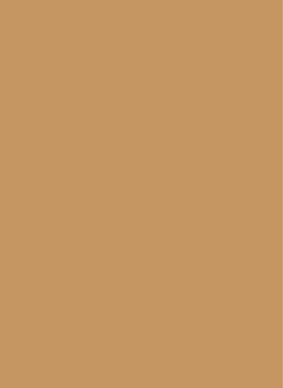 Devine Terracotta Deluxe Swatch 8-by-11
