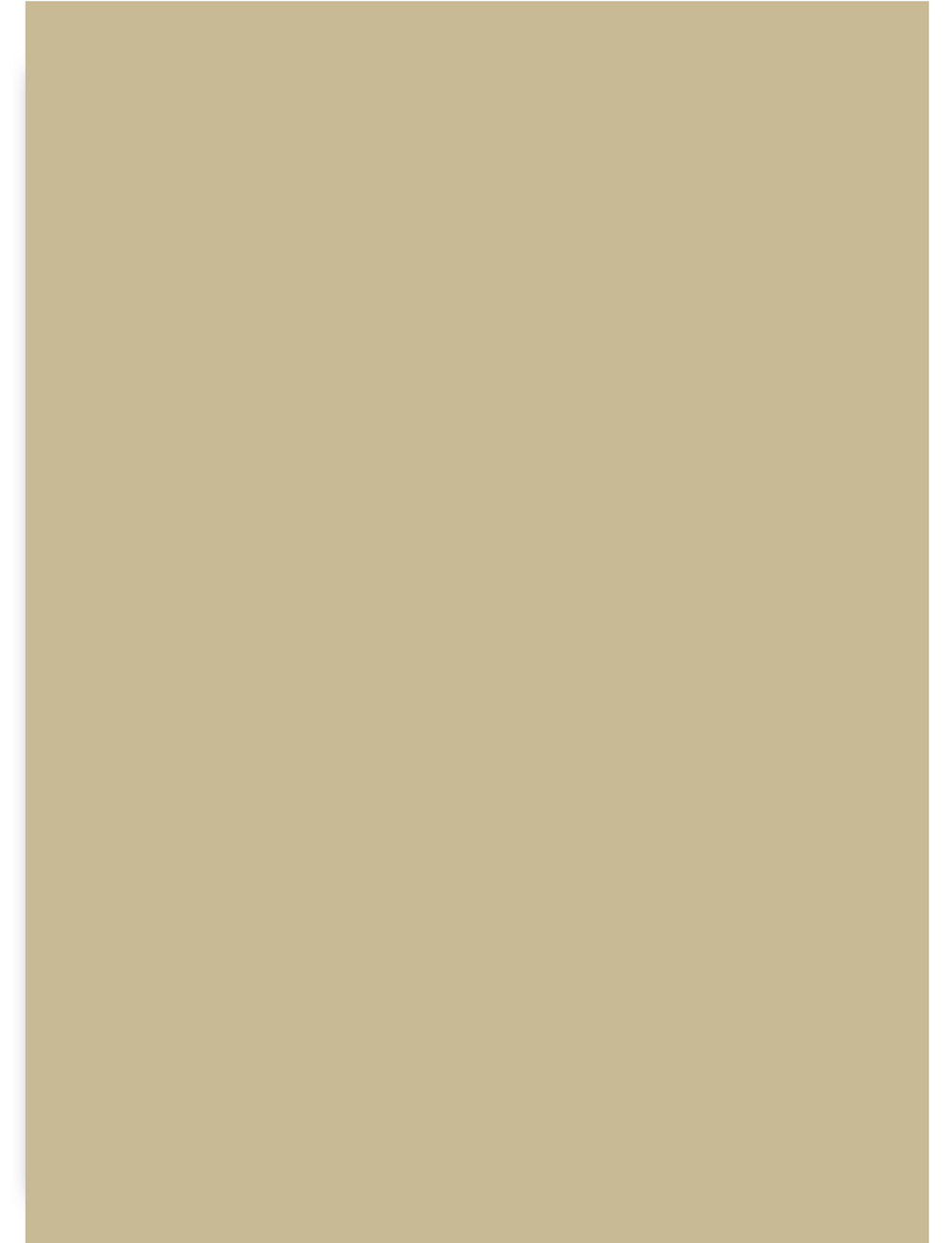 Devine Peanut Deluxe Swatch 8-by-11