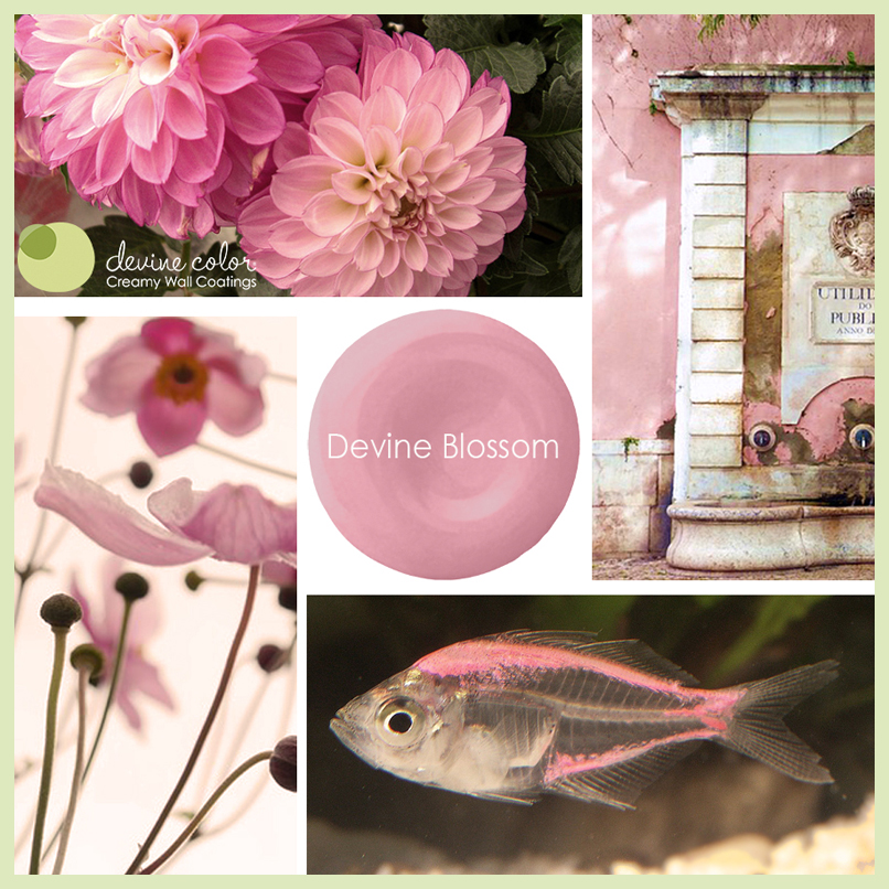 Devine Blossom is a perfectly handcrafted pink wall color available at Target. Part of Devine Color paint color collections.