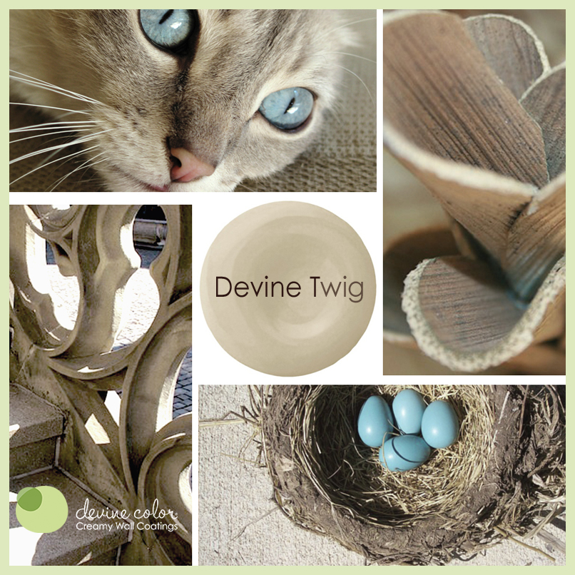 Devine Twig is a perfectly handcrafted neutral wall color available at Target. Part of Devine Color paint color collections.