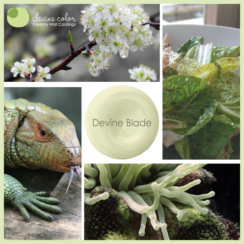 Devine Blade is a perfectly handcrafted light green wall color. Part of Devine Color Cool Grasses and Evergreens paint color collection.