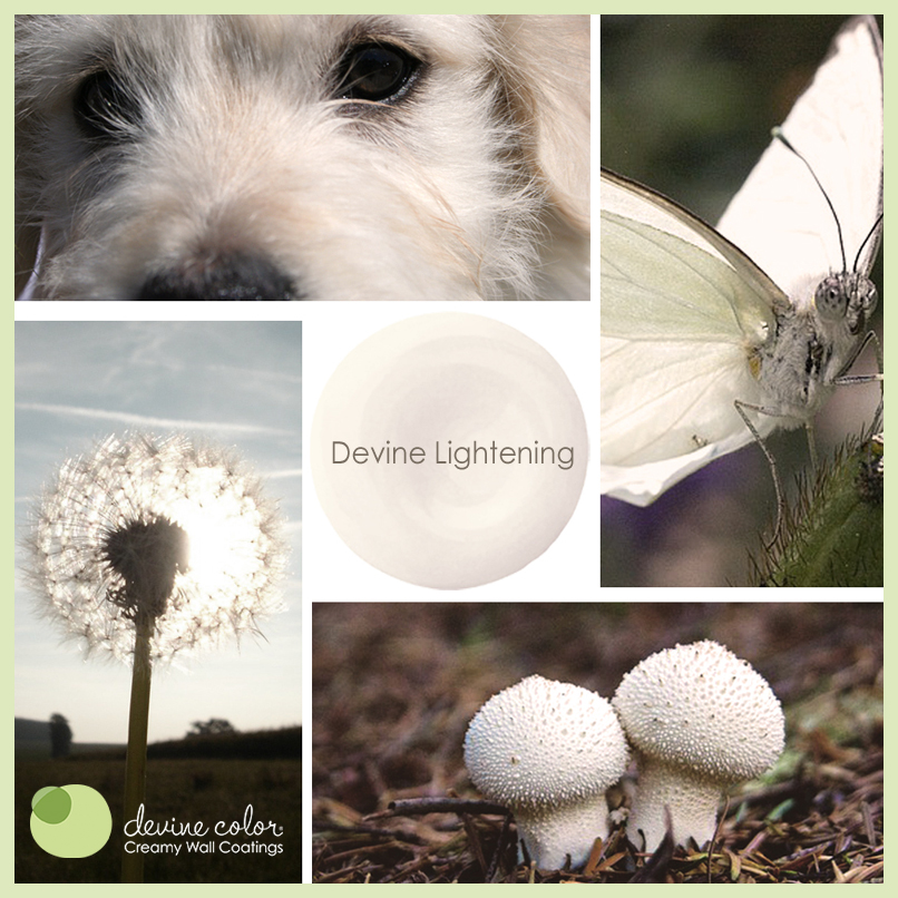 Devine Lightening is a perfectly handcrafted soft white wall color available at Target. Part of Devine Color paint color collections.