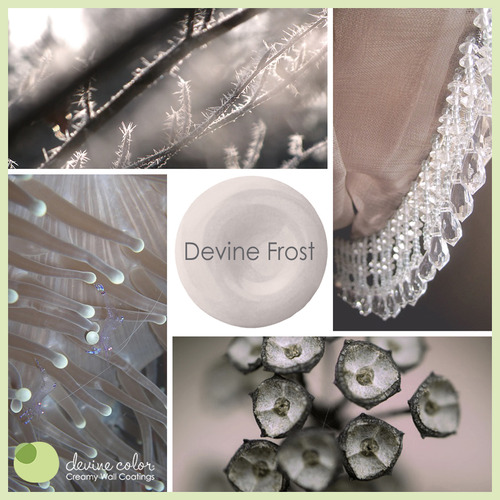 Devine Frost is a perfectly handcrafted neutral lavender wall color. Part of Devine Color Silver Skies paint color collection.