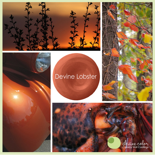 Devine Lobster is a perfectly handcrafted orange red wall color. Part of Devine Color Running Wild paint color collection.