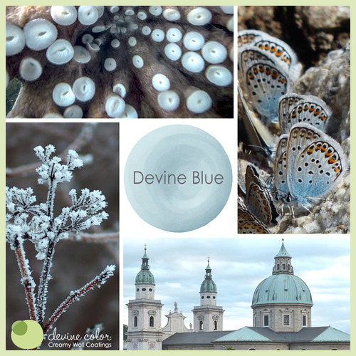 Devine Blue is a perfectly handcrafted fresh blue wall color. Part of Devine Color Ocean Tide Pools paint color collection.