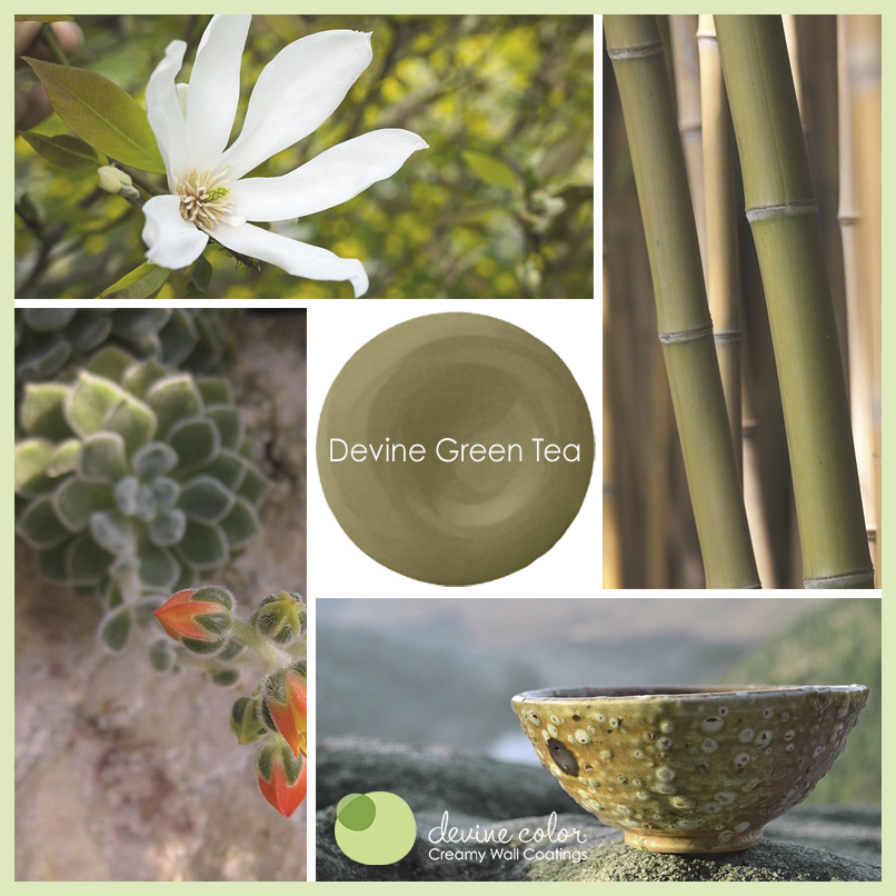Devine Green Tea is a perfectly handcrafted green wall color. Part of Devine Color Espresso Blends paint color collection.