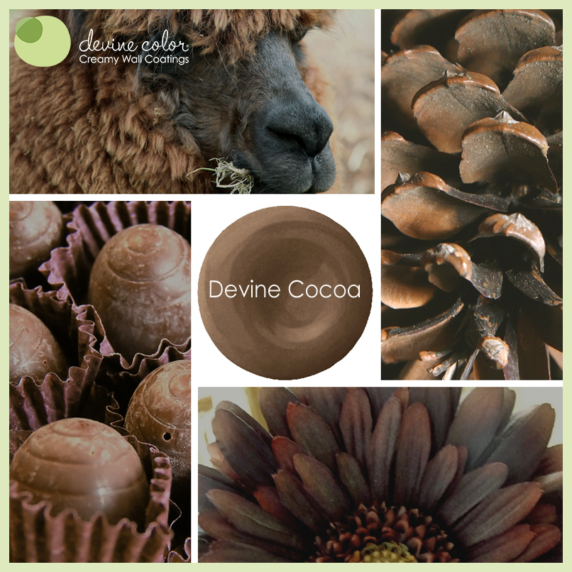 Devine Cocoa is a perfectly handcrafted chocolate neutral wall color. Part of Devine Color Espresso Blends paint color collection.