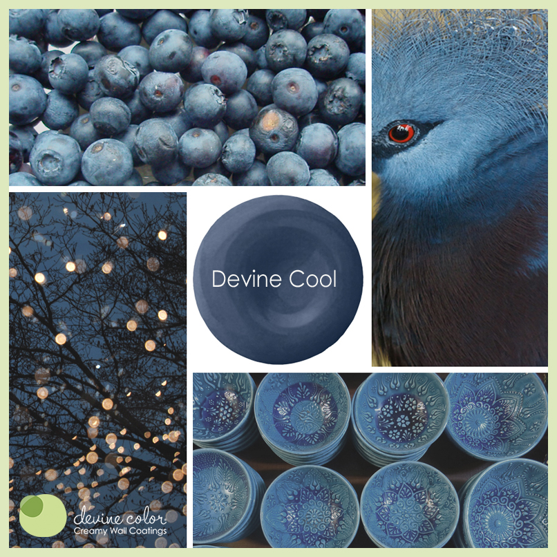 Devine Cool is a perfectly handcrafted deep blue wall color. Part of Devine Color Ocean Tide Pools paint color collection.