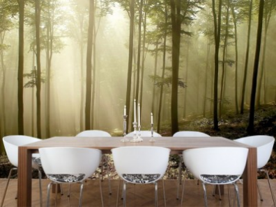 Hit:New options for photography wallpaper murals are exciting options