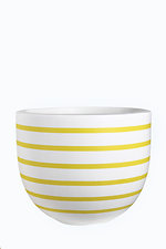 SACHET Yellow            Horizontal lines