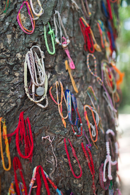 The Killing tree, PhomPenh, Kambodsja Pol Pots soldaterslo barn ihjel mot dette treet foran deres mødre før de også ble drept...