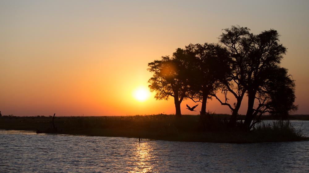 Solnedgang over Chobe deltaet i Botswana