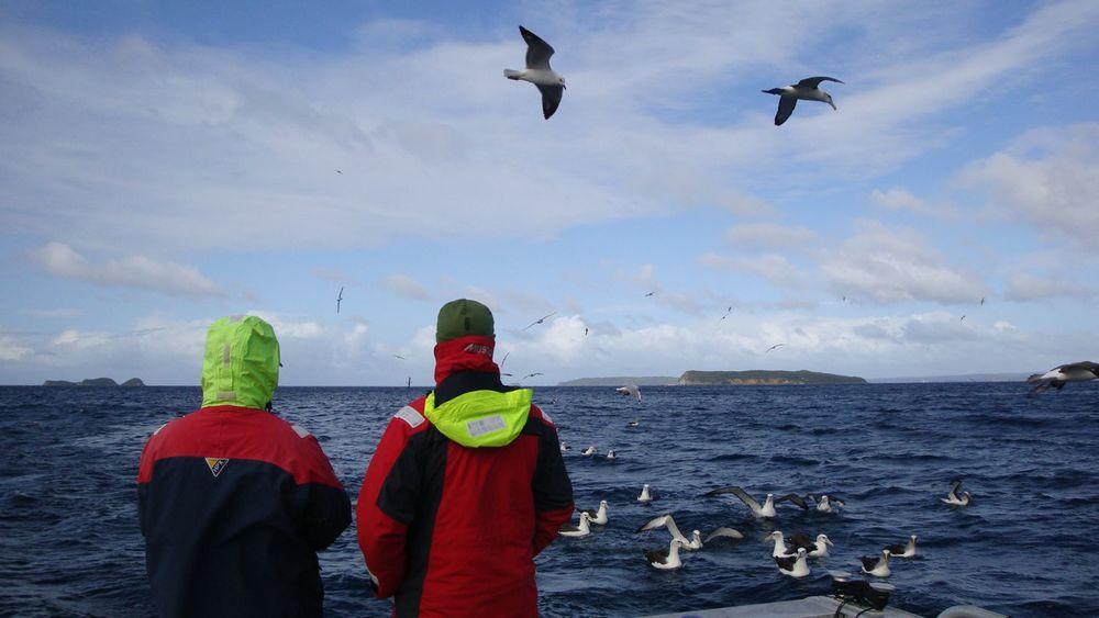 Fiordlandprodpic.jpg