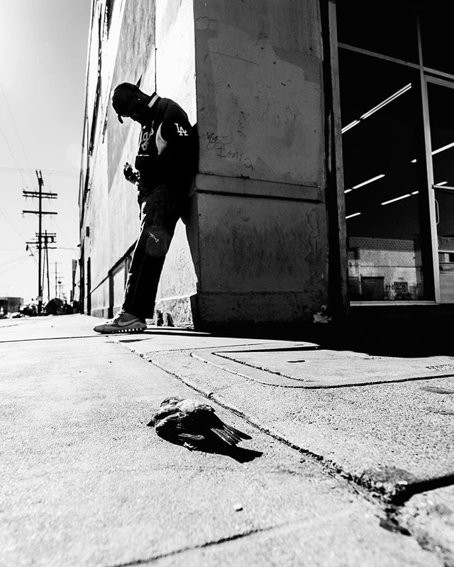 """Fallen."" . Part of a project I'm working on with @hhcla in Skid Row. More to come.  ____________________________  By Josh S. Rose. Los Angeles, 2017.  ____________________________  #bnwsouls #bnw_drama #bnw_creatives #bnw_fanatics #foto_blackwhite #bnw_addicted #top_bnw #bnw_planet #amateurs_bnw #bnw_rose #bnw_madrid #bnw_magazine #bnw_captures #bnw_life #bnwmood #bnw_city #bnw_society #bnw_of_our_world #bnw_demand #bnwphotography #bnw_life #bnw_kings #bnw_zone #bnw_globe #bnw_empire #bnw_divine #show_us_bw #bnw_diamond #bnw_igers #bnw_eye"