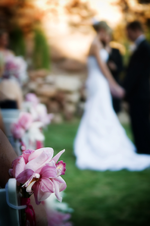 WeddingPhotographer_Scottsdale24.jpg