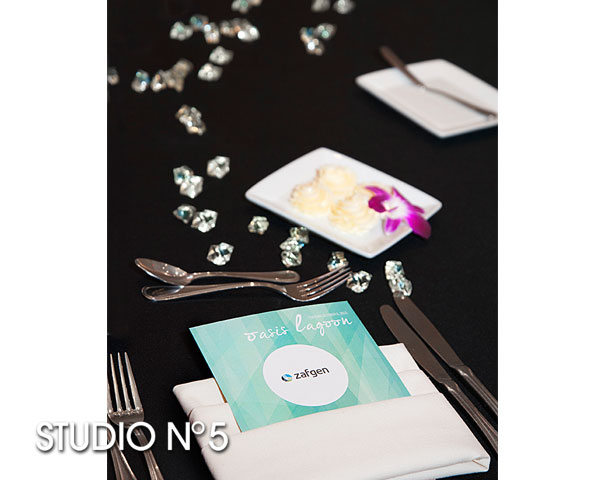 Table setting for dinner. Photography by Studio No 5 for Zafgen, Inc.