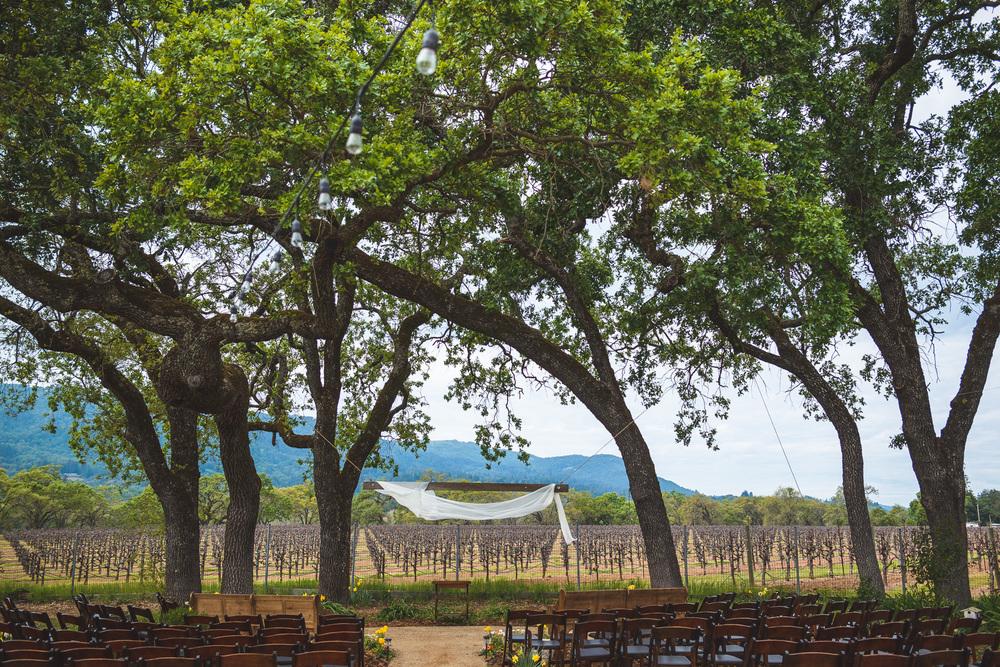 Sonoma_Backyard_Wedding-Chuck_Caroline-001.jpg