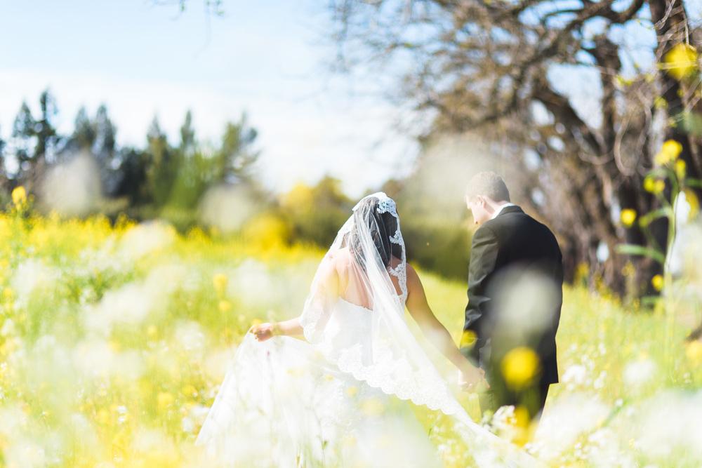 Sonoma_Backyard_Wedding-Chuck_Caroline-019.jpg