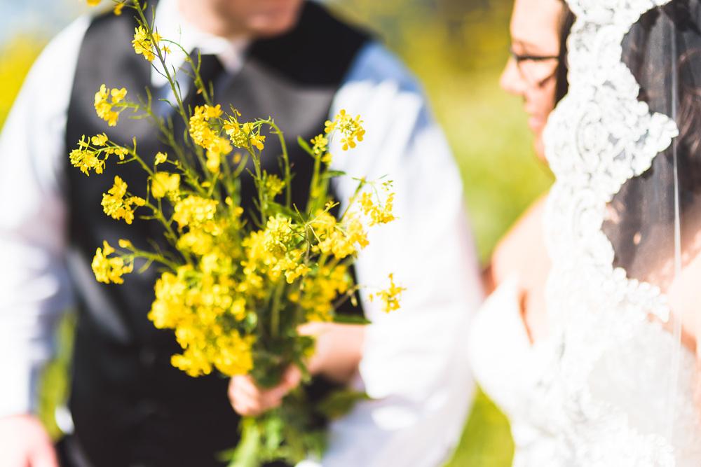 Sonoma_Backyard_Wedding-Chuck_Caroline-025.jpg