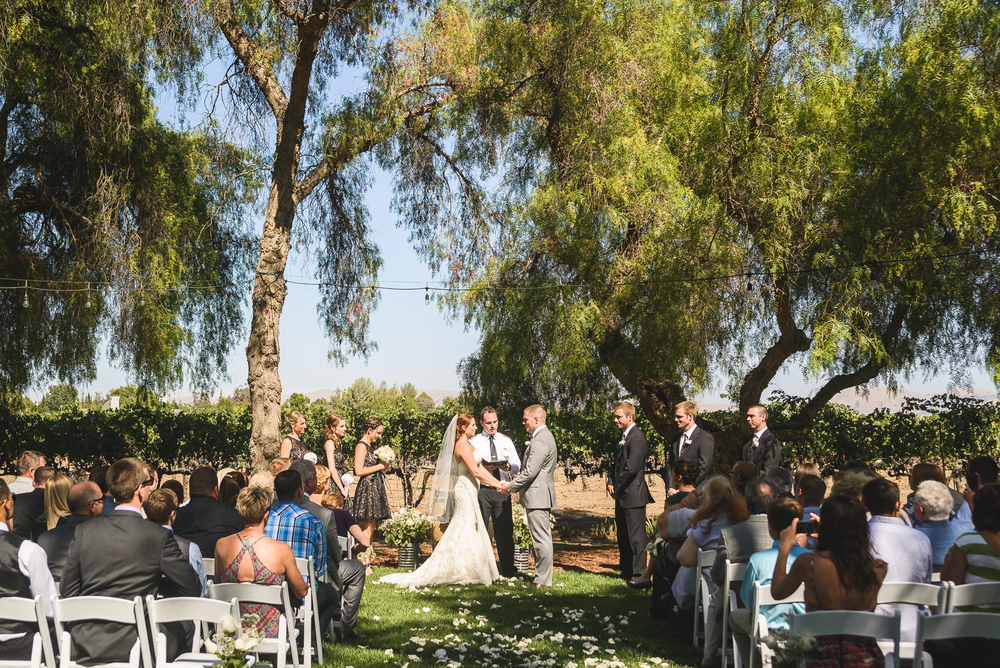 RETZLAFF VINEYARD WINERY WEDDING // ALEX + JIM // LIVERMORE WEDDING PHOTOGRAPHERS
