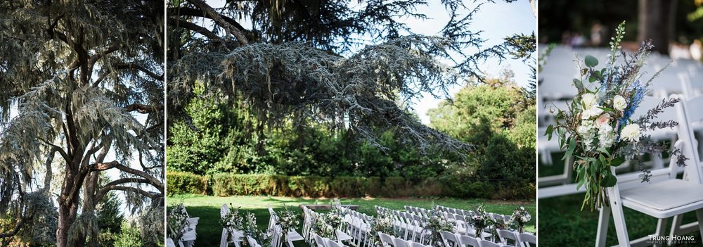 Shakespeare Garden in Golden Gate Park Wedding