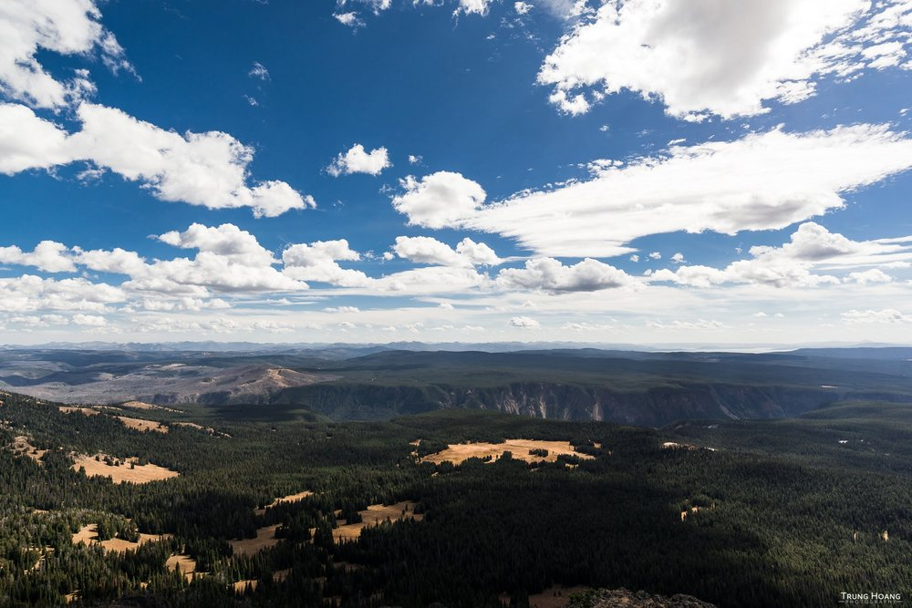 Grand Canyon of Yellowstone from Mt Washburn