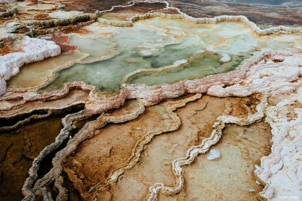 Colors of the Travertine Terrance at Yellowstone's Mammoth Hot Springs