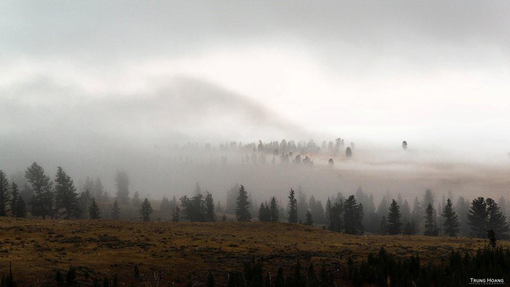 Rolling Fog through Yellowstone