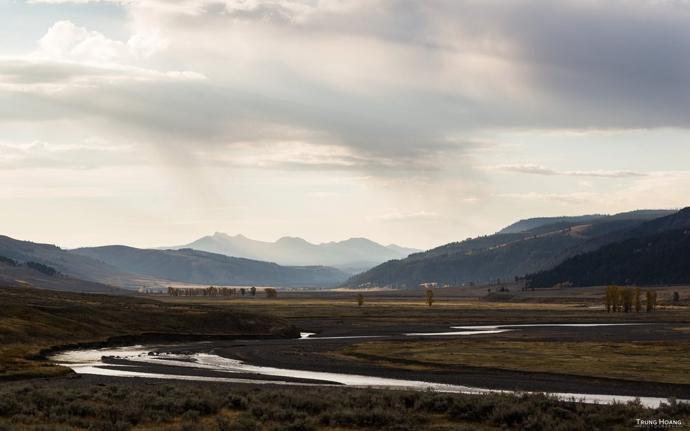 Yellowstone River winds through the Lamar Valley