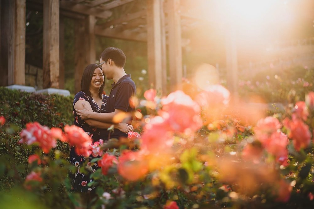 Berkeley Rose Garden Engagement Photos