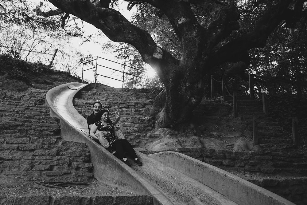 Codornices Park Slide