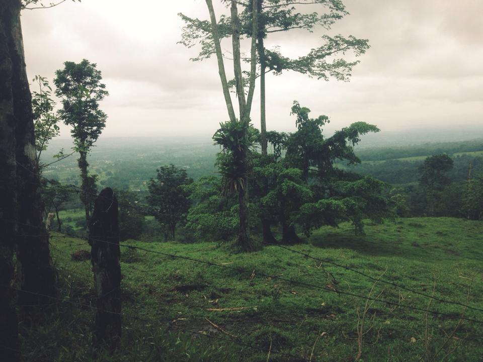 Cerro Chato 3.jpg