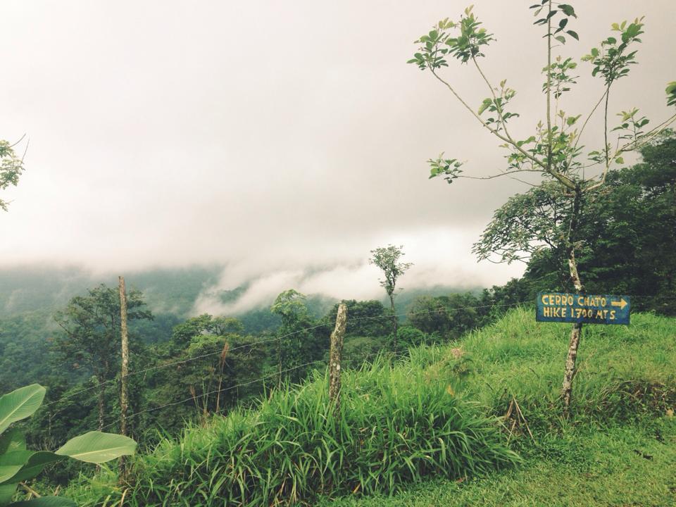 Cerro Chato 1.jpg