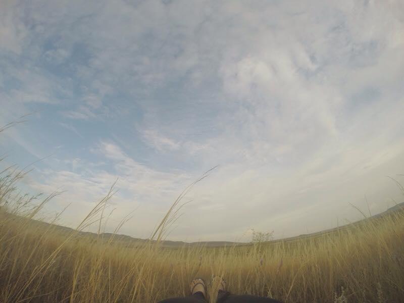 Grasslands1.jpg