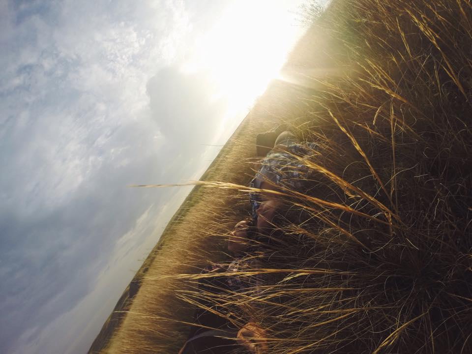 Grasslands5.jpg