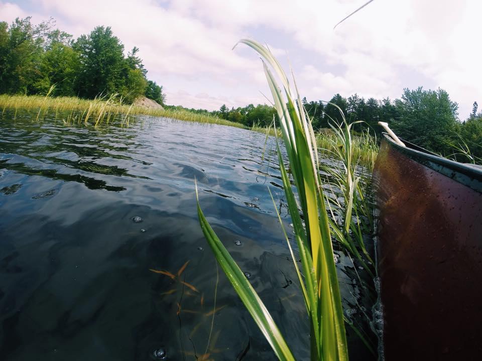Canoe8.jpg