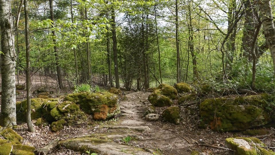 Hikes Bitten Escapes - 6 scenic hikes in halton hills