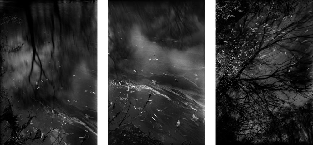 Dark Water triptych