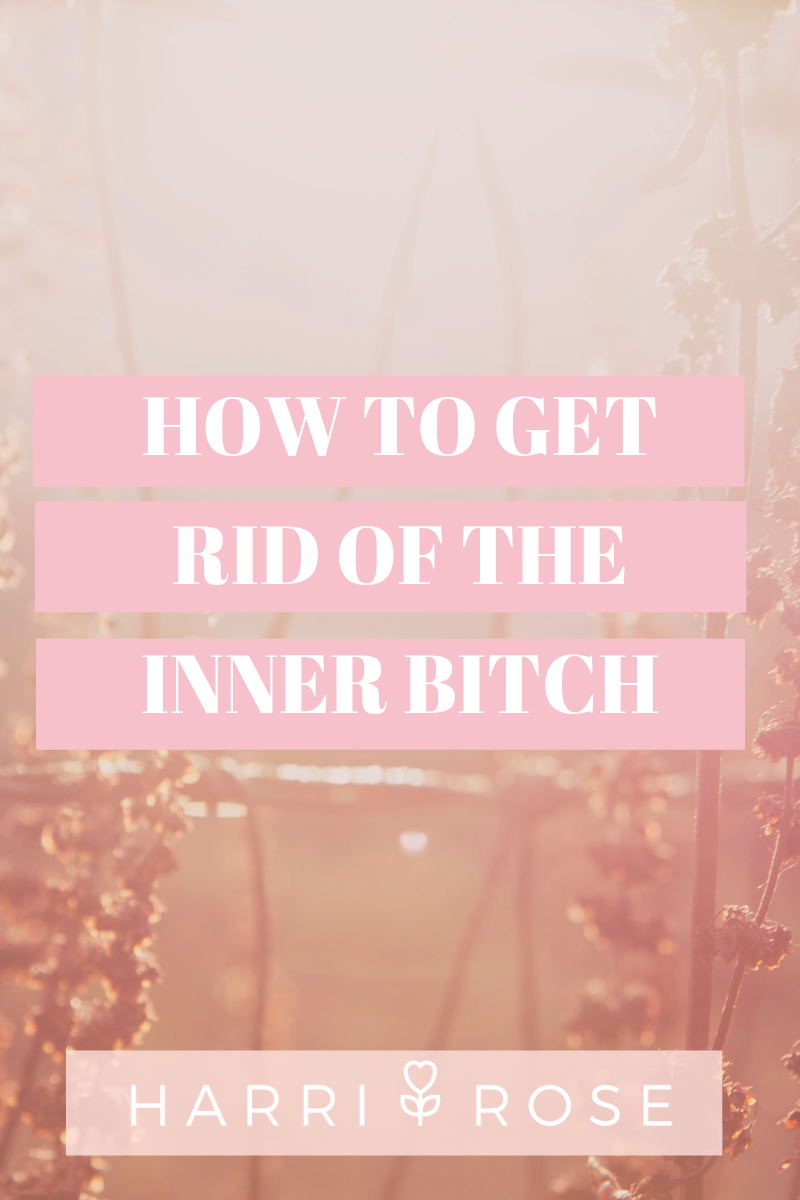 How to get rid of the inner bitch.png