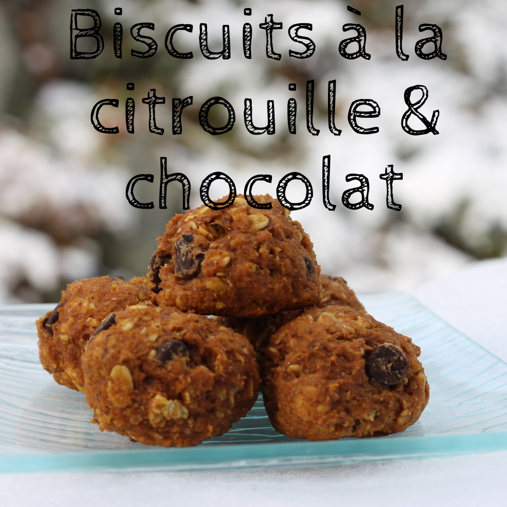 Biscuits citrouille.jpg