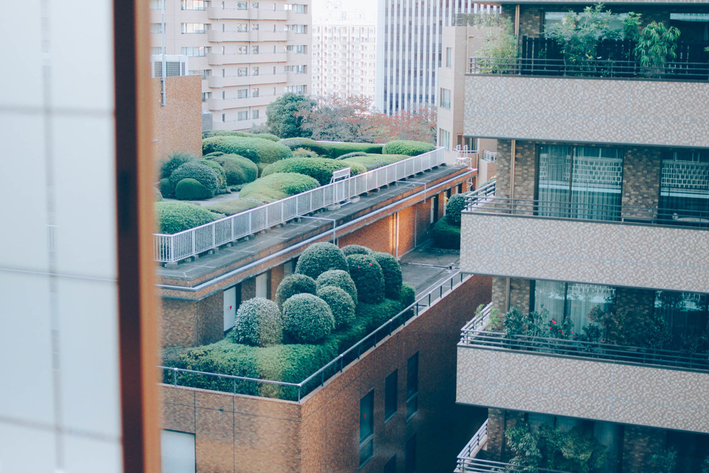 American Expat Breakfast in Tokyo | metalandhoney.com