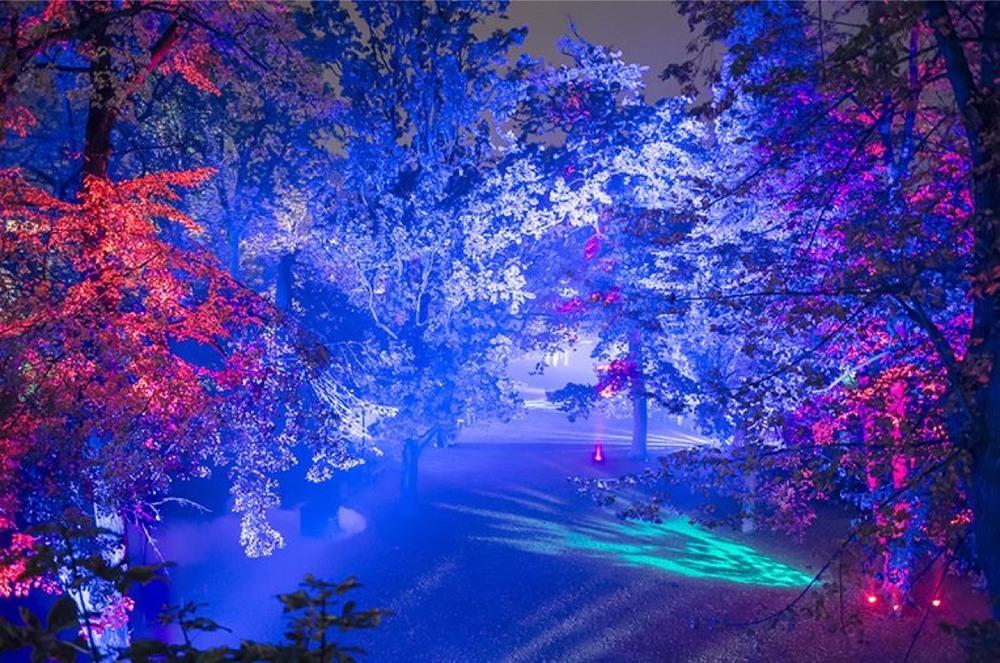 LUMINA Festival of Light Cascais 2016