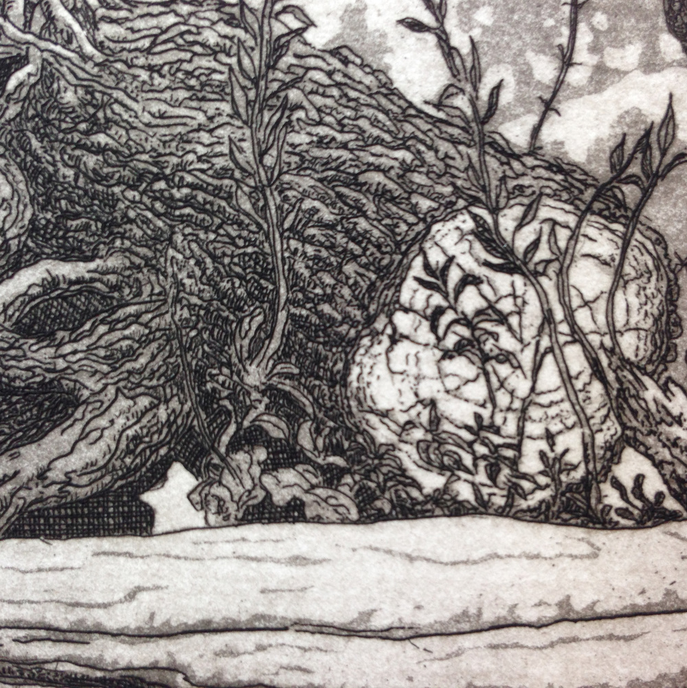 Detail of the print showing both line etching and aquatint techniques.