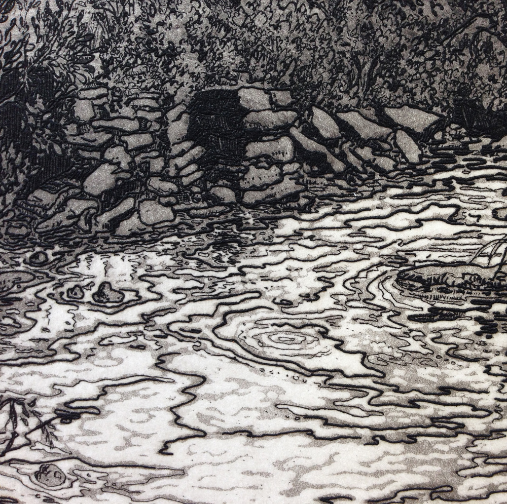 A detail from a finished print showing the line etching and aquatint work.