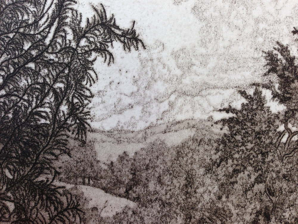 T  his detail from the upper right corner of the print shows Jack's use of soft ground, aquatint and line etching.