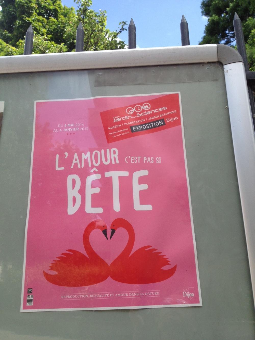 Arquebuse Dijon June 2014a.JPG